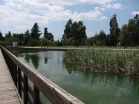 Αναβολή της εκδήλωσης για το Πάρκο Τρίτση λόγω καιρού – Μεταφέρεται την Κυριακή 04 Μαίου