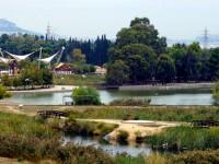 Πάρκο Τρίτση: Μια αμαρτωλή ιστορία κακοδιαχείρισης, υποβάθμισης και αδιαφορίας