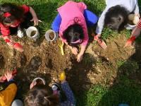 Προτάσεις για την οικολογική, κοινωνική και εκπαιδευτική λειτουργική αναβάθμιση του Πάρκου Τρίτση
