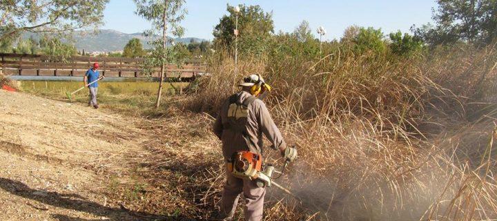 Κ.Κάβουρας: Απέναντι στην προσπάθεια διάσωσης του Πάρκου «Αντώνης Τρίτσης» η διοίκηση Ζενέτου