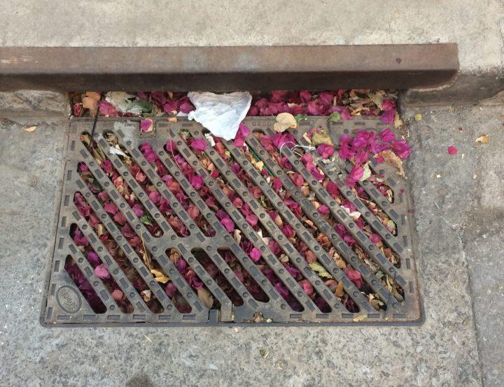Το θέμα του καθαρισμού των φρεατίων έφερε στο δημοτικό συμβούλιο η Αλληλέγγυα Πόλη