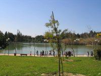 Ενημέρωση στην Ειδική Μόνιμη Επιτροπή Προστασίας Περιβάλλοντος της Βουλής για το Μητροπολιτικό Πάρκο Α.Τρίτσης [video]