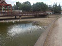 Διευκρινήσεις του Φορέα Διαχείρισης για την μονάδα επεξεργασίας λυμάτων για επαναχρησιμοποίηση στο Πάρκο Α. Τρίτσης