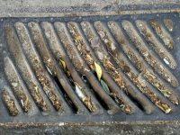 Χρηματοδότηση από το Υπουργείο Εσωτερικών προς τον Δήμο Ιλίου για τον καθαρισμό και τη συντήρηση φρεατίων υδροσυλλογής