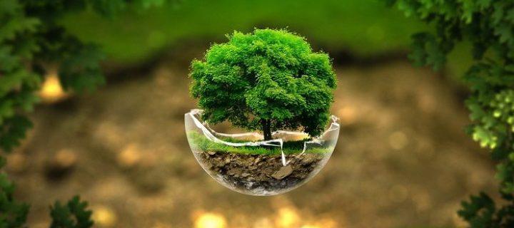 Κάλεσμα για συμμετοχή στη συγκέντρωση για την απόσυρση του αντιπεριβαλλοντικού νομοσχεδίου
