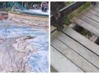 Ναυάγησαν στις ξέρες τα έργα που θα έκαναν στο Πάρκο Α. Τρίτσης οι κ.κ. Πατούλης & Ζενέτος