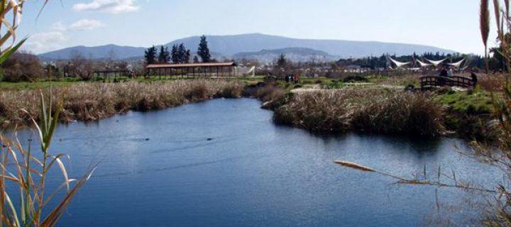 Ημερίδα: Ενημέρωση και συζήτηση για τη διαχείριση των υδάτων στο Πάρκο «Αντ.Τρίτσης»: Τα προβλήματα των λιμνών και η αντιμετώπισή τους