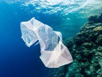 ΙΕΛΚΑ: Είκοσι τρεις ερωτήσεις και απαντήσεις σχετικά με τη νέα νομοθεσία για την πλαστική σακούλα