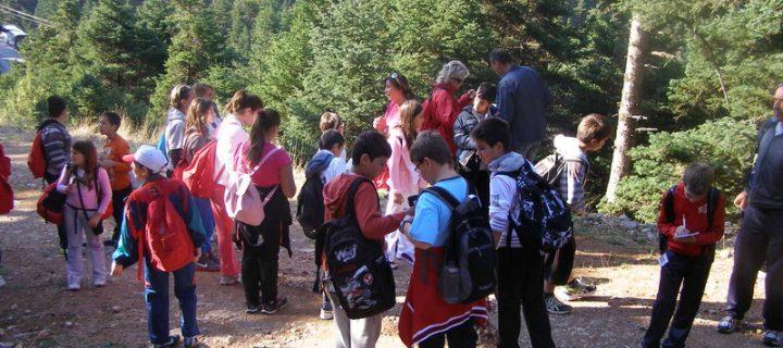 Θετική ανταπόκριση του Υπουργού Παιδείας στο αίτημα για δημιουργία Κέντρου Περιβαλλοντικής Εκπαίδευσης στο Πάρκο Α.Τρίτσης [video]
